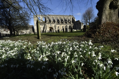 Malmesbury Abbey to light up purple